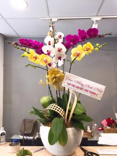 hoa tươi giá rẻ tại quận 3