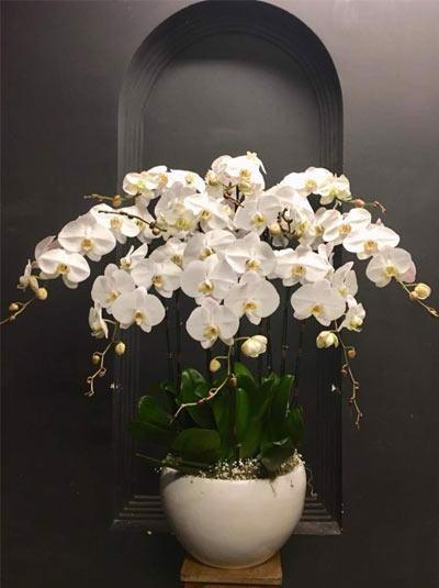 hoa tươi quận 3 giá rẻ