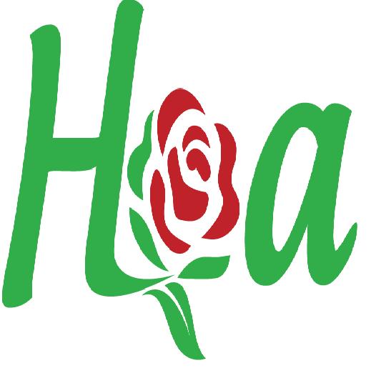 Shop hoa tươi, điện hoa tươi online