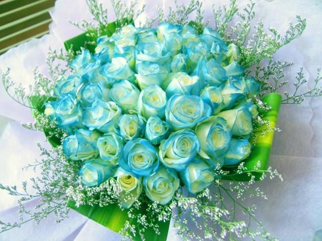 hoa tươi quận 2 chất lượng giá rẻ uy tín