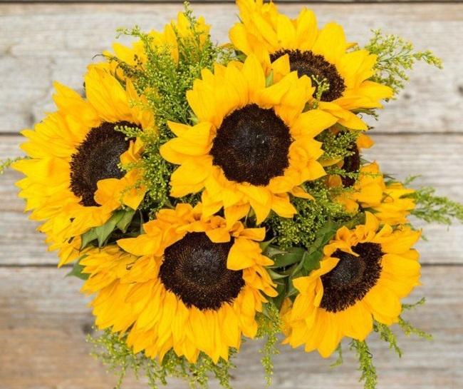 hoa tươi giá rẻ nhất tây ninh 1