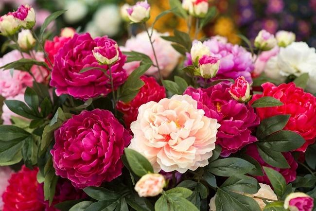 mẹo tặng hoa mừng sinh nhật cho sếp nữ