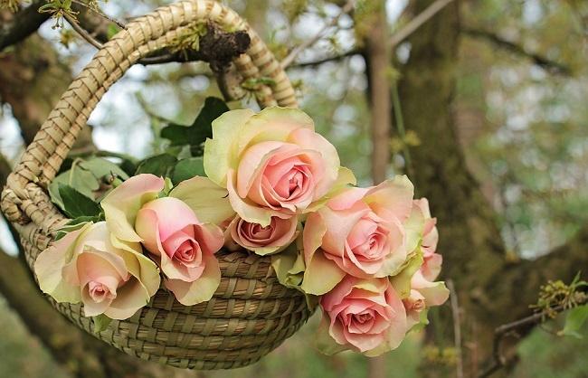shop hoa đẹp ở đà nẵng 1
