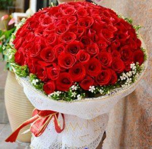 Tổng hợp những loài hoa tặng cho người yêu