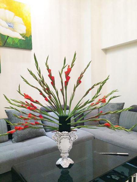 cách cắm hoa lay ơn
