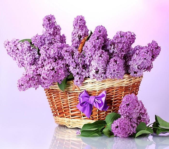 giữ hoa tươi lâu trong 9 ngày tết