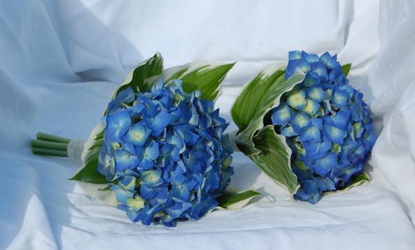 Hoa cưới cẩm tú cầu cầm tay