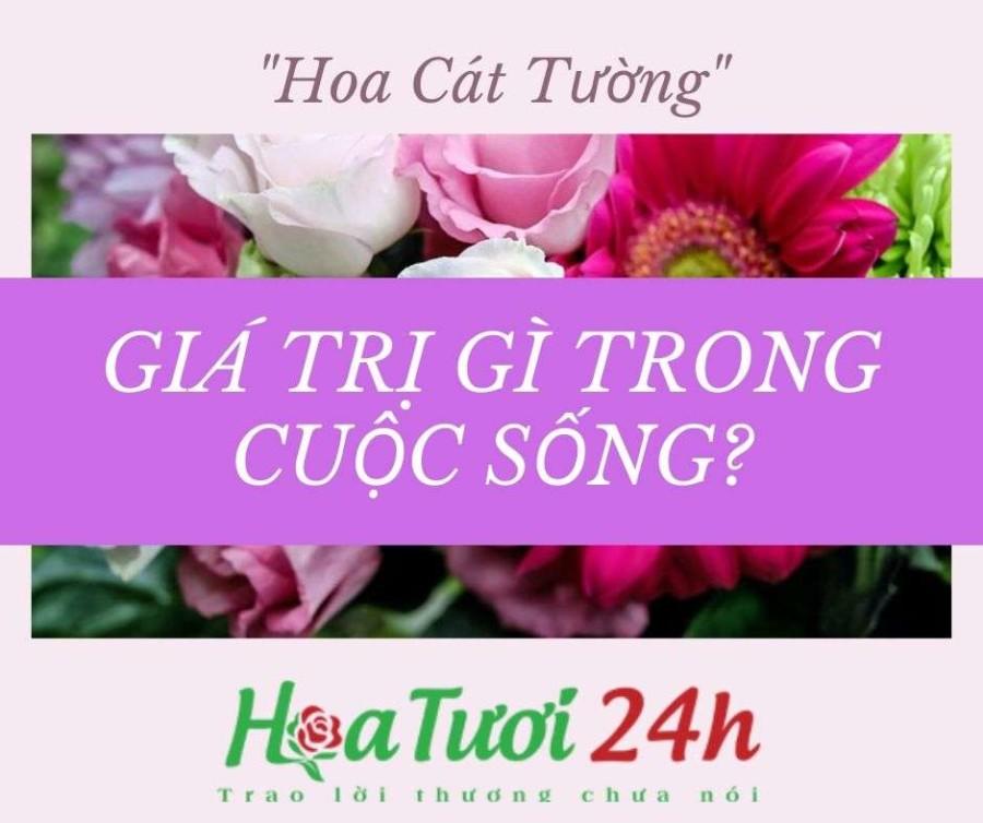 loai-hoa-cat-tuong-mang-den-y-nghia-gi