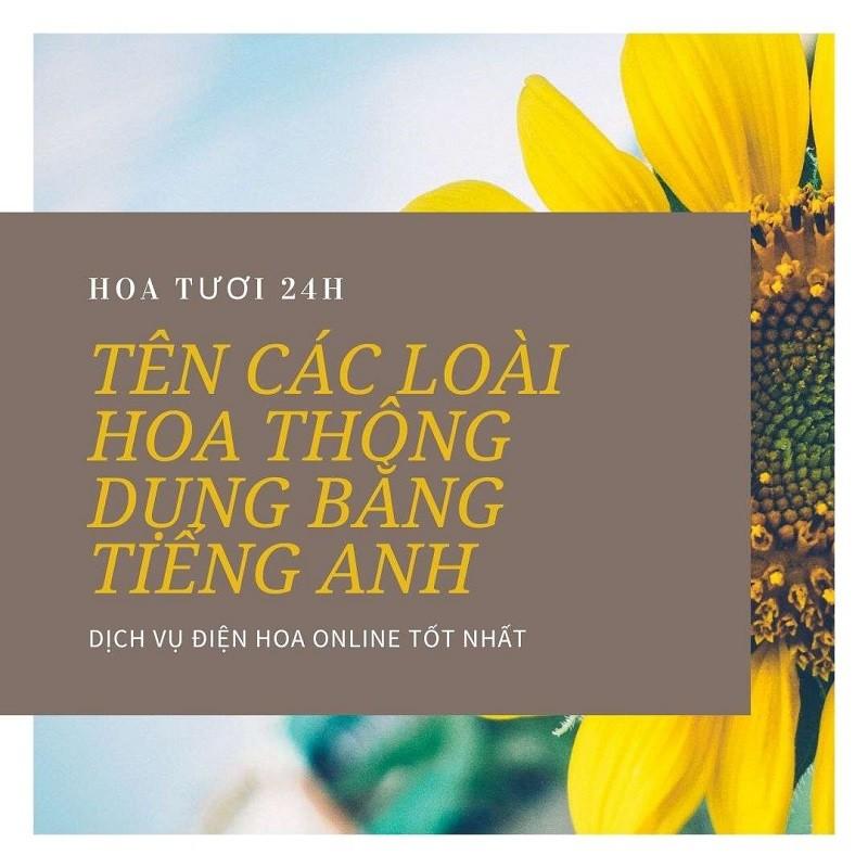 ten-cac-loai-hoa-thong-dung-bang-tieng-anh