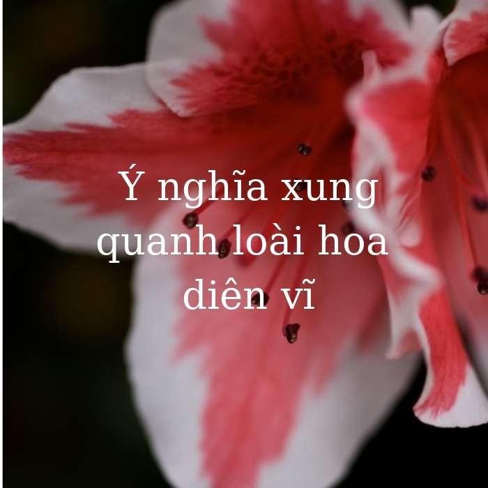 y-nghia-hoa-dien-vi-trong-cuoc-song