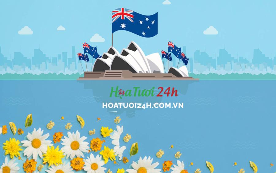 Ý nghĩa hoa cúc trắng đối với người dân Australia