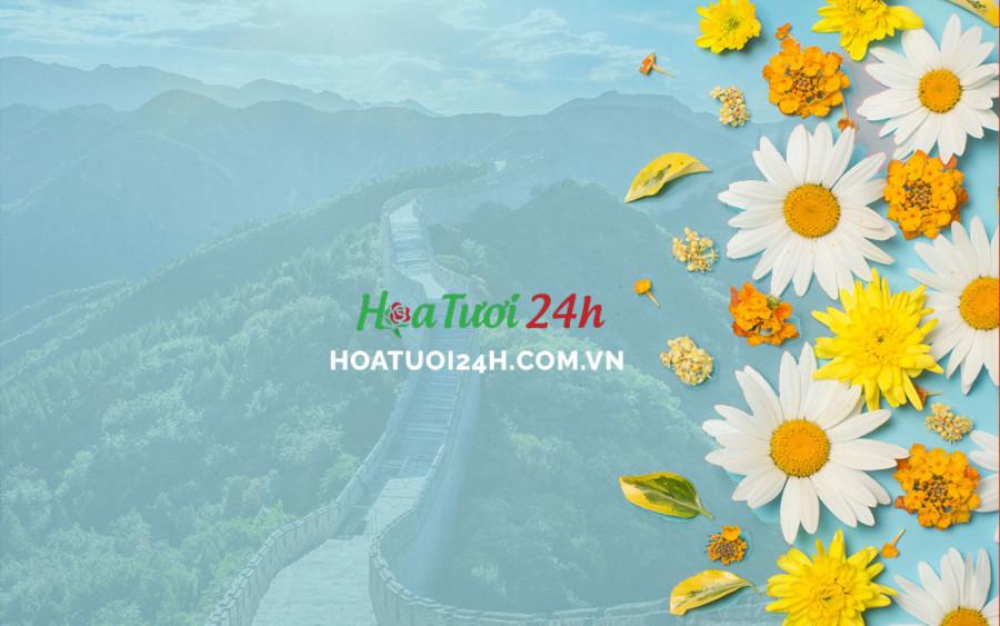 Ý nghĩa hoa cúc trắng tại Trung Quốc