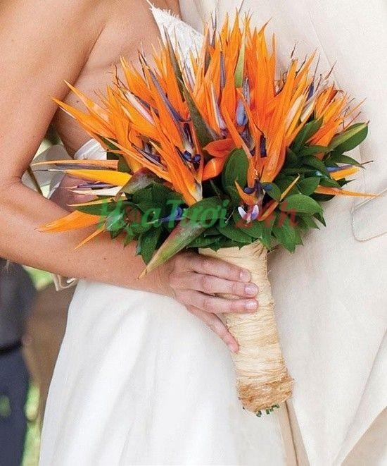 Bạn bè kết hôn nên tặng hoa gì