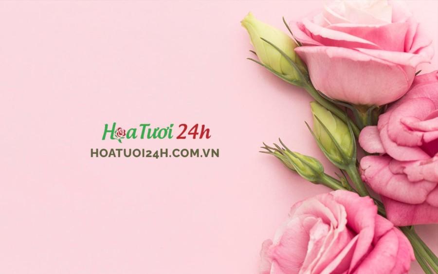 hoa-hong
