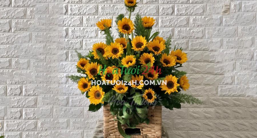 loài hoa tượng trưng cho sự bình an