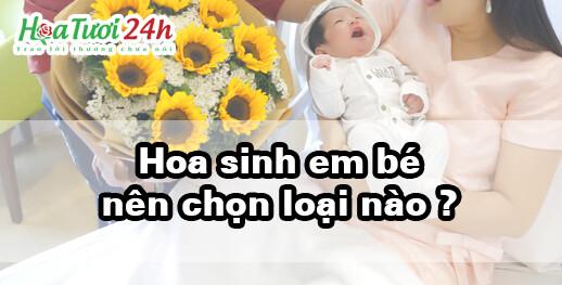 hoa chúc mừng sinh em bé